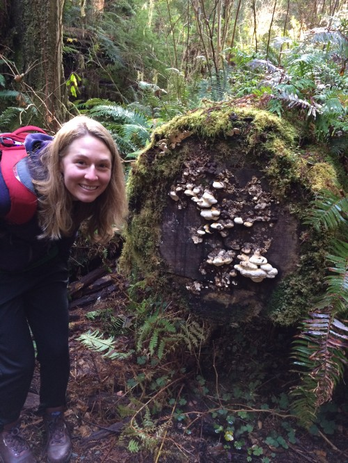 Claire and some cute decomposer fungi