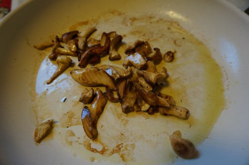 Browned hedgehog mushrooms.
